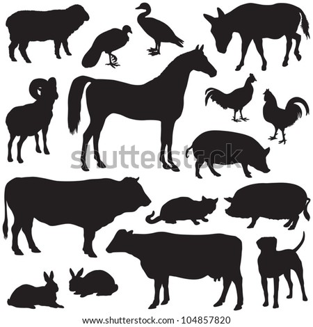 Farm animals collection - vector silhouette - stock vector