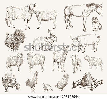 farm animals. set of vector sketches on a white background - stock vector