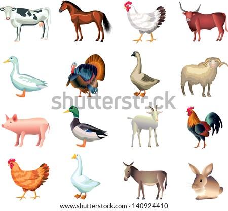 farm animals vector set - stock vector
