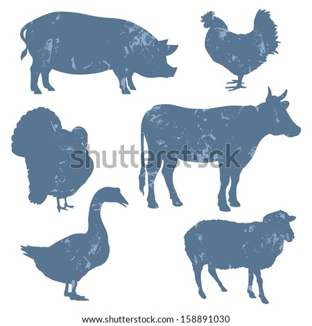 Farm animals, vector silhouettes with grunge effect - stock vector
