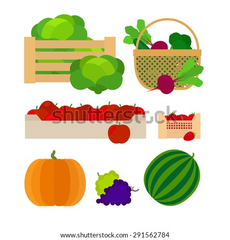 Farm baskets with vegetables and fruits vector illustration