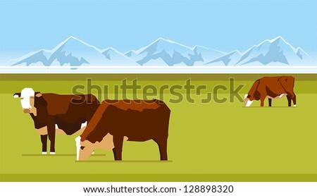 Farm cows grazing on a green lawn - stock vector