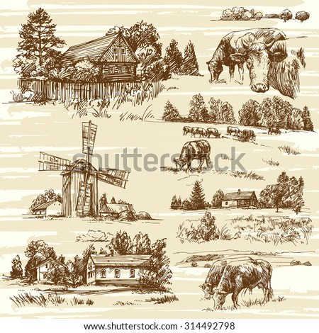 Farm, cows, rural landscape - hand drawn set - stock vector