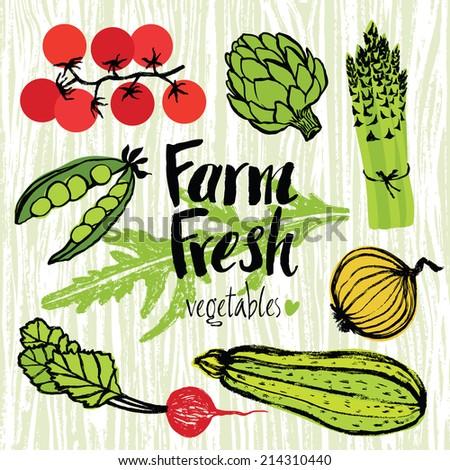 Farm fresh vegetables set - stock vector