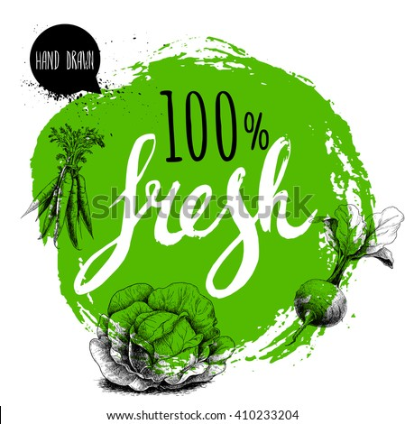 Farmer 100% fresh veggies design template. Green rough circle with hand painted letters. Engraving sketch style vegetables. Carrot bunch, beet root with leafs and cabbage. Hand drawn design. - stock vector