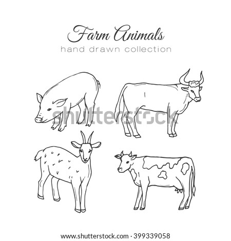 Farming illustration. Vector farm elements. Hand drawn farm animals. Hand sketched pig, cow, goat and bull. Farm animals illustration, farm pig, farming elements, farm cow, cow vector illustration. - stock vector