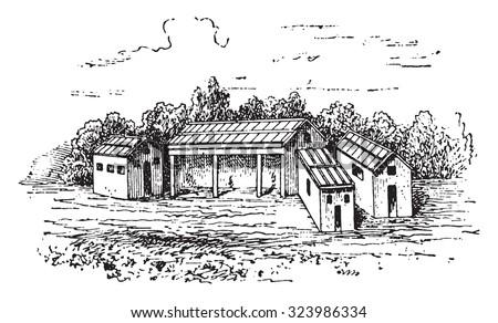 Farmyard, vintage engraved illustration. - stock vector