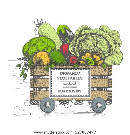 Fast Delivery Fresh Vegetables Box On Stock Vector ...