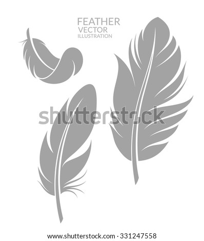 Feather. Bird. Chicken. Goose. Dove. Silhouette