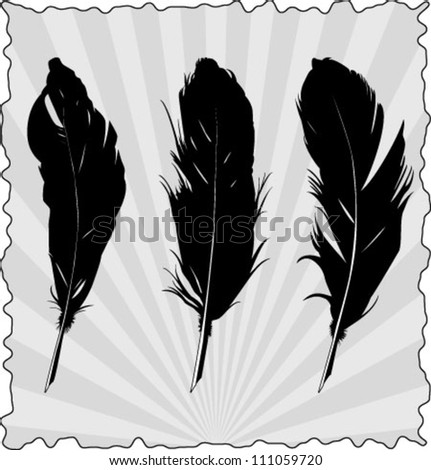 Feather Pen set 1 - stock vector