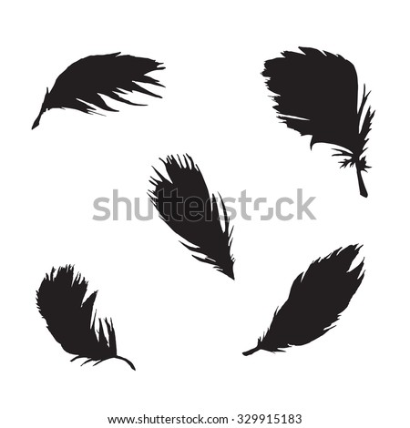 Feather set. Vector black feathers isolated on white background