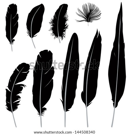 feather silhouette stock images, royalty-free images & vectors