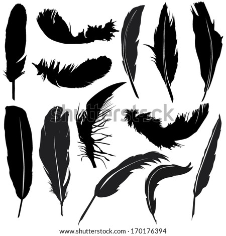 Feather silhouette set - stock vector