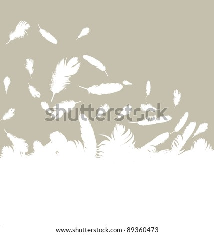 Feather vector background with copy space for text - stock vector