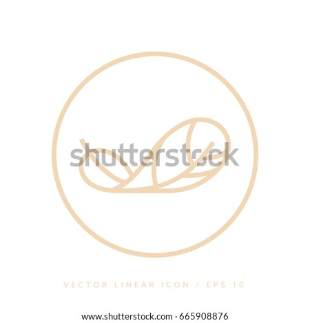 Feather vector line icon symbol for label and template of the banner.