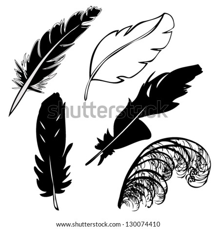 feather vector  silhouette - stock vector