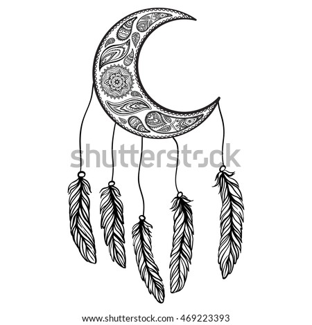 Feathers, moon, ornaments on isolated background