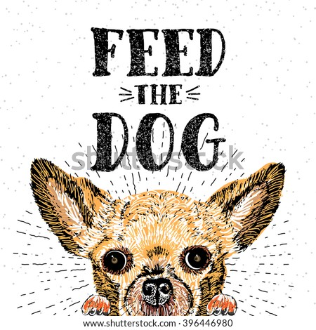 Feed the dog. Vector illustration with hand drawn lettering and dog on texture background. Inscriptions for dog lovers. Painted brush lettering. Custom typography. Calligraphic. Demanding phrase. - stock vector