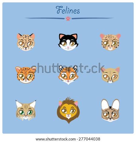 Felines collection vector illustration - stock vector