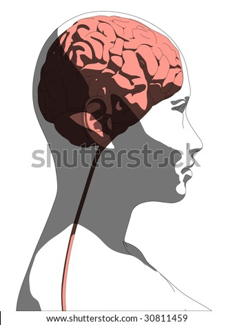 female head with brain - stock vector