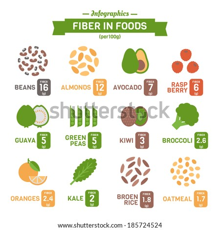 Fiber in Foods Infographics  - stock vector