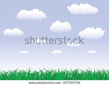 Field of Grass, Vector Illustration - stock vector
