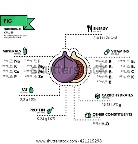 Fig - nutritional information. Healthy diet. Simple flat infographics with data on the quantities of vitamins, minerals, energy and more.