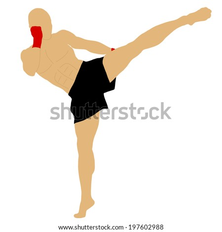 fighter doing a high kick - stock vector