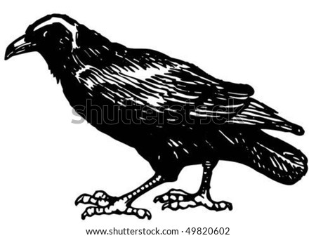 Figure raven on a white background - stock vector