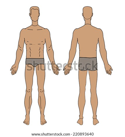 figure torso men vector - stock vector