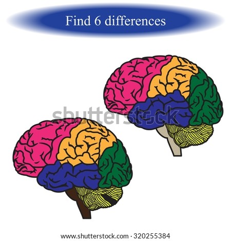 Find differences (  human brain ). Vector illustration. - stock vector
