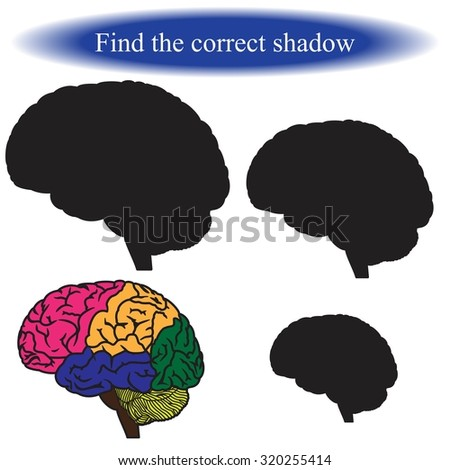 Find the correct shadow ( human brain ). Vector illustration. - stock vector