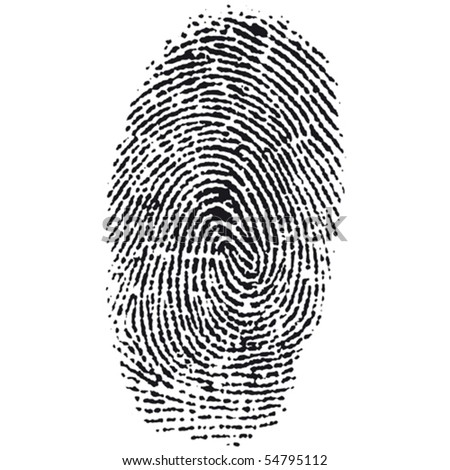 fingerprint - stock vector