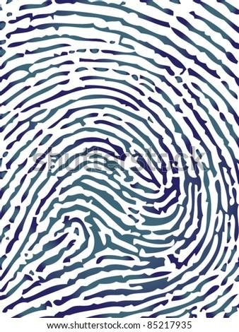 Fingerprint close-up vector - stock vector