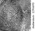 Fingerprint Crop - stock vector