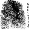 fingerprint, in vector format - stock vector
