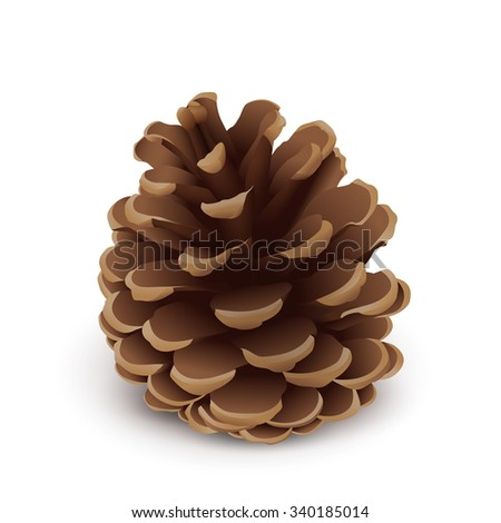 Fir Cone Vector Symbol - Isolated Icon on White Background. Christmas Greeting Card Design Template Element with Brown Color. Pine Cone Graphic Illustration. Pinecone Decor Object. - stock vector