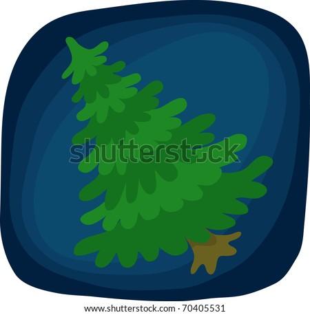 Fir Tree - stock vector