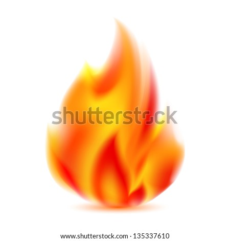 Fire, bright flame on light background. Vector illustration 10eps - stock vector