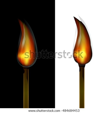 Fire Burn Wood Match on Black and White Background Vector
