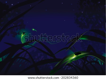 Fireflies. Small lighting bugs in a fairy forest - stock vector