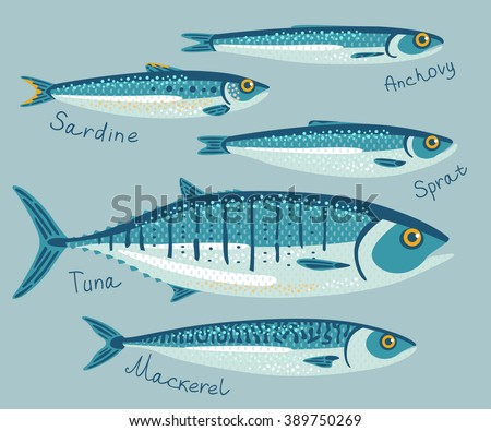 Fish collection conservation flat style set stock vector for Tuna fish size