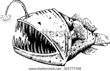 Anglerfish Stock Image...