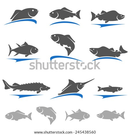 Fish set. Vector - stock vector