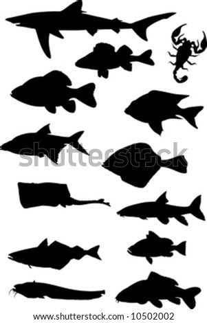 fish silhouette - stock vector