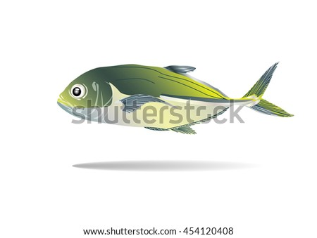 Jack fish stock images royalty free images vectors for What is a jack fish