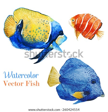 fish, watercolor, ocean, - stock vector