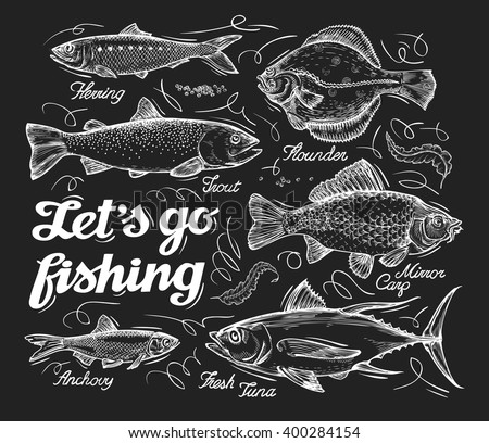 Fishing. Hand drawn sketch fish, herring, trout, flounder, carp, tuna, sprat. Vector illustration - stock vector