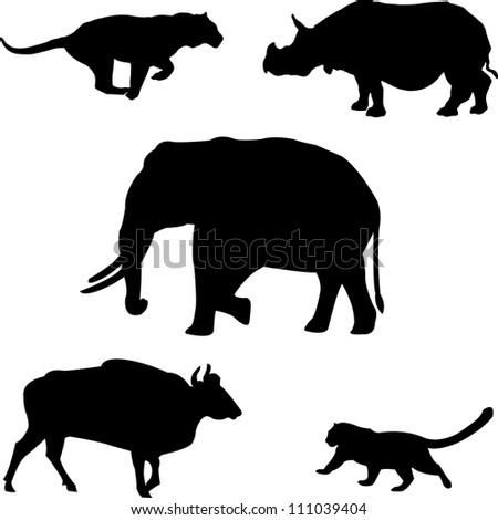 Five big wild beasts in India: elephant, rhino, gaur,tiger, leopard - stock vector