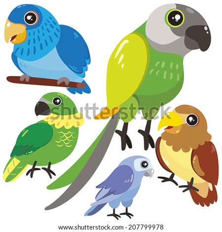 five cute birds set on white background  - stock vector